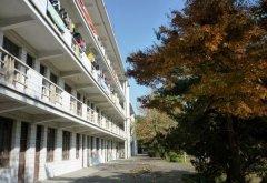 台州护士学校